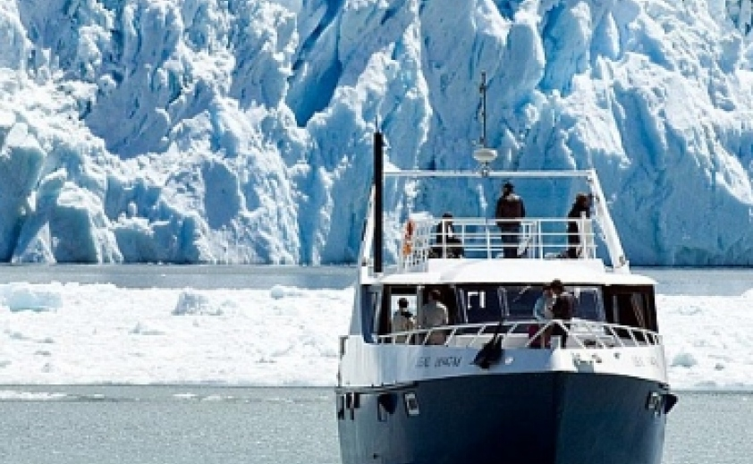 Gourmet Glaciers Navigation - Full Day Experience