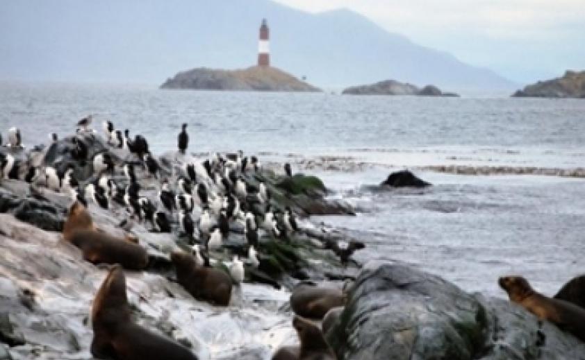 Navegação Canal Beagle, Ilha dos Lobos Marinhos e Farol do Fim do Mundo com Trekking